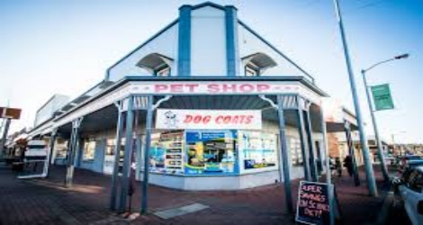 Armidale Pet Shop & Aquarium - 1