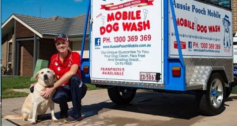 Aussie Pooch Mobile Dog Wash & Grooming - New South Wales - 3