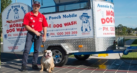 Aussie Pooch Mobile Dog Wash & Grooming - Queensland - 2