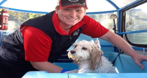 Aussie Pooch Mobile Dog Wash & Grooming - South Australia - 2
