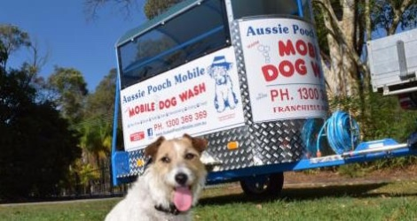 Aussie Pooch Mobile Dog Wash & Grooming - Victoria image