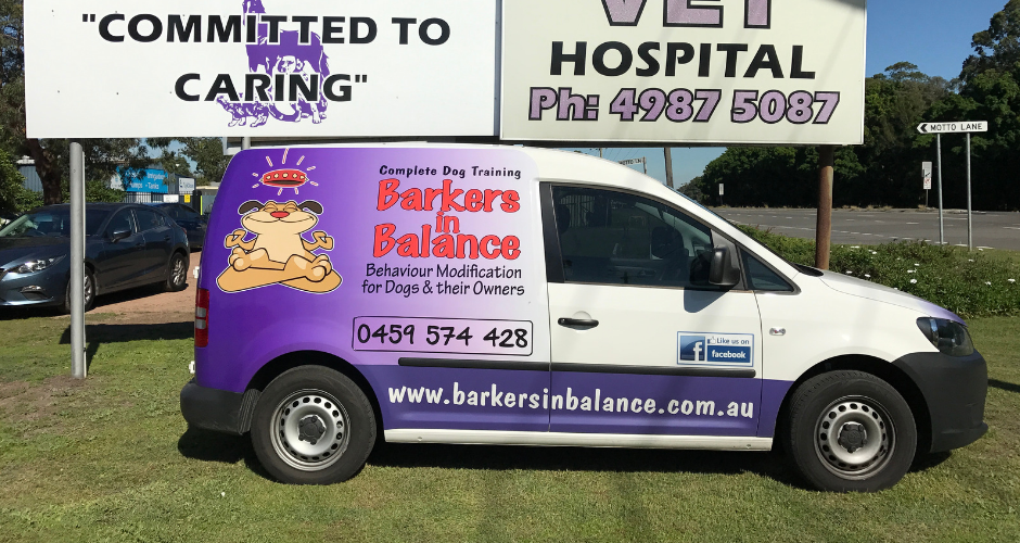 Barkers In Balance - Lake Macquarie Area - 5