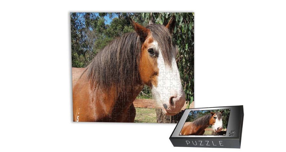 dmemories4u personalised puzzles - TAS (Delivery) - 2