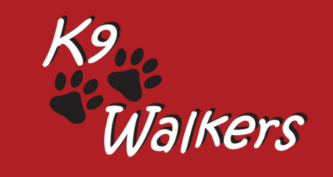 K9 Walkers - Dog Walking image
