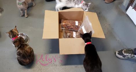 Koly's Treats - SA (Delivery)  image