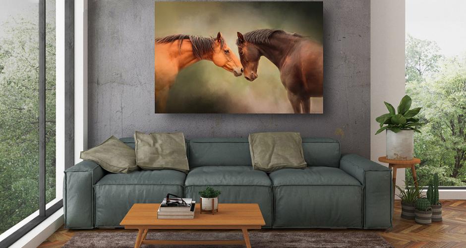 Michelle Wrighton- Equine & Pet Photography image
