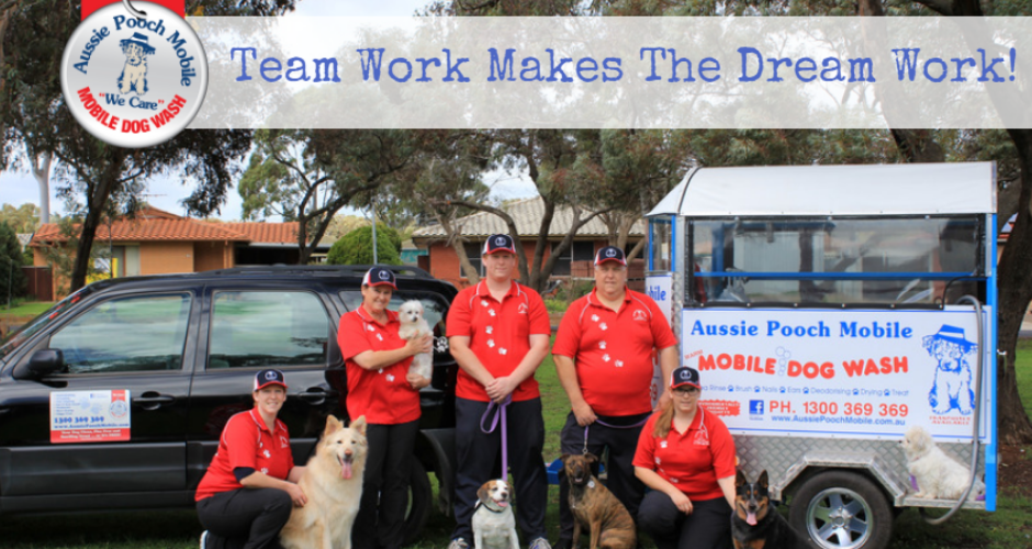 Aussie Pooch Mobile Dog Wash & Grooming - Queensland image