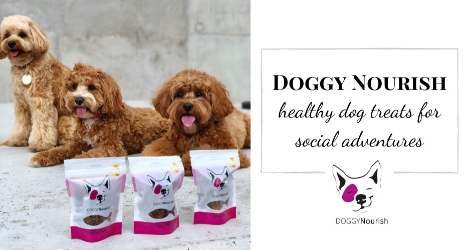 Doggy Hampers - NT (Delivery) - 5