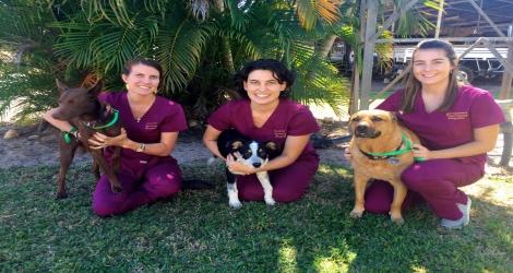 Girraween Veterinary Hospital image