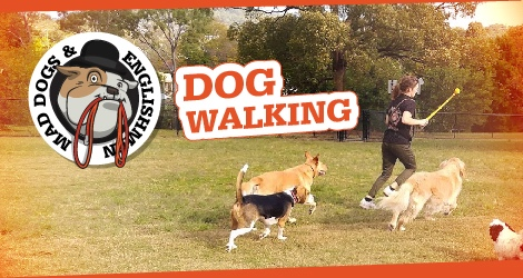 Mad Dogs & Englishmen - Brisbane image