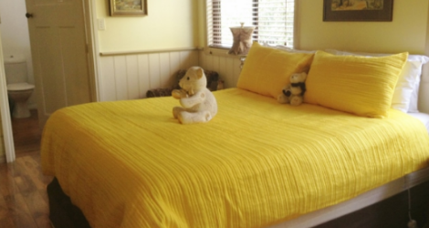 Must Love Dogs B&B and Self-Contained Cottage - 6