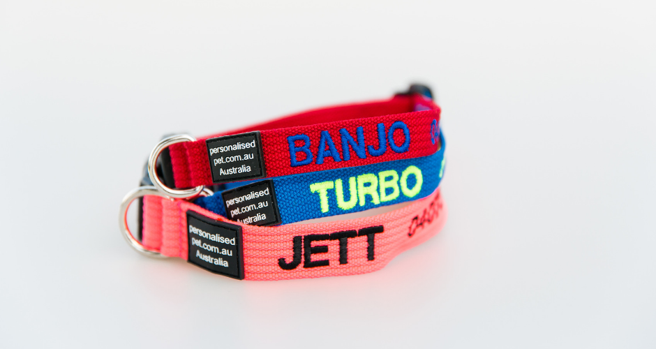 Personalised Pet Collars - WA (Delivery) - 1