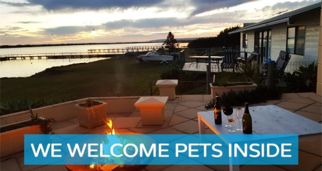 Pet Let - Goolwa Channel, Hindmarsh Island - 1