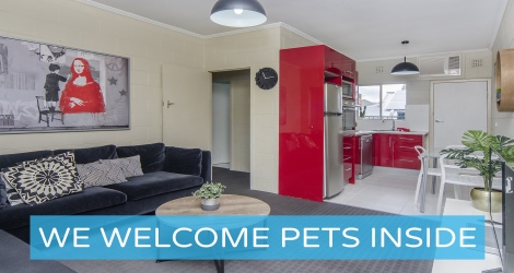 Pet Let - Kensington Rd, Norwood image