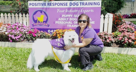 Positive Response Dog Training - Brisbane Area - 2