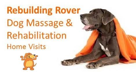 Rebuilding Rover – Massage for Dogs - 1