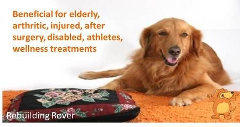 Rebuilding Rover – Massage for Dogs - 3