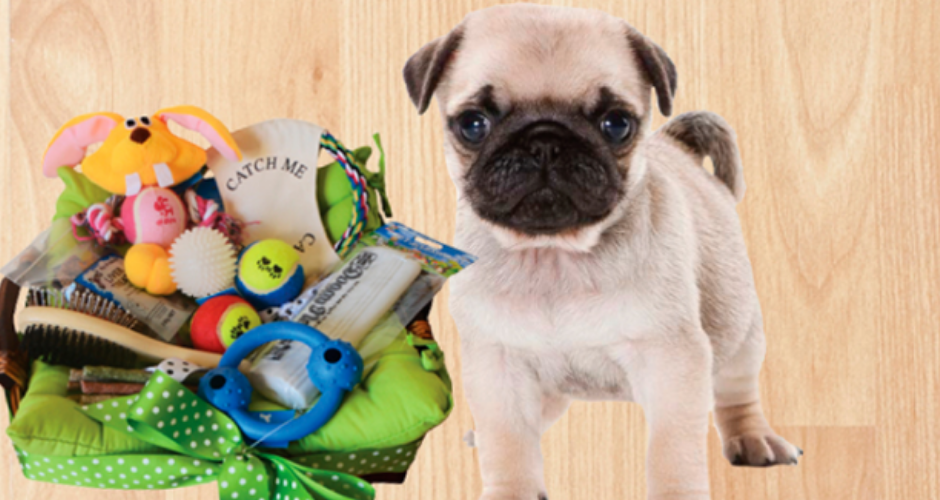 Scamper Hampers - NSW (Delivery) image