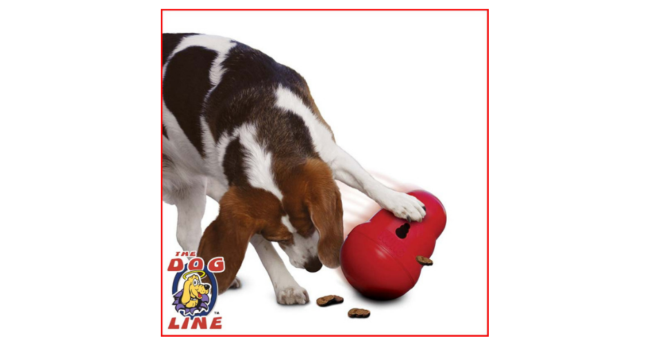 The Dog Line - ACT (Delivery) image